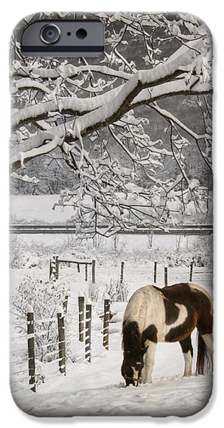 Christmas Greeting Digital iPhone Cases - Paint in the Snow iPhone Case by Lori Deiter
