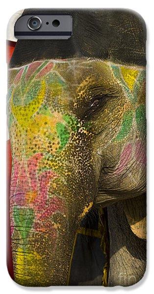Elephant iPhone Cases - Painted Elephant, India iPhone Case by John Shaw
