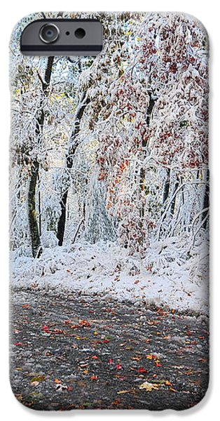 Painted Snow iPhone Case by Catherine Reusch  Daley