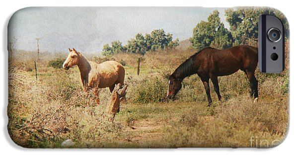 The Horse iPhone Cases - Painterly Horses in Desert iPhone Case by Beverly Guilliams