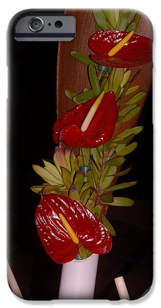 Painter Poster Photographs iPhone Cases - Painters Palette iPhone Case by Sonali Gangane
