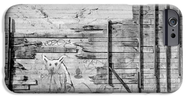 Black Dog iPhone Cases - Painting Of A Dog On A Wall, San iPhone Case by Panoramic Images