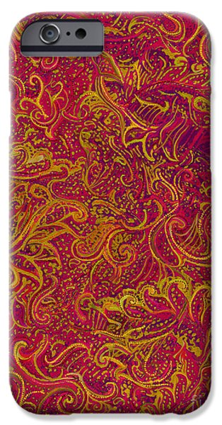 Iraq Prints iPhone Cases - Paisley Festival iPhone Case by CR Leyland