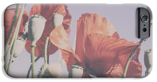 A Sunny Morning iPhone Cases - Pale Poppy Day iPhone Case by Nomad Art And  Design