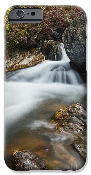 Overcast Day iPhone Cases - Palisades Creek in Idaho iPhone Case by Vishwanath Bhat