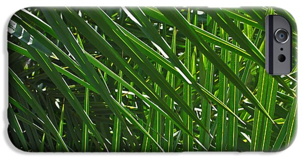 Botanical iPhone Cases - Palm Crosshatch iPhone Case by Rona Black