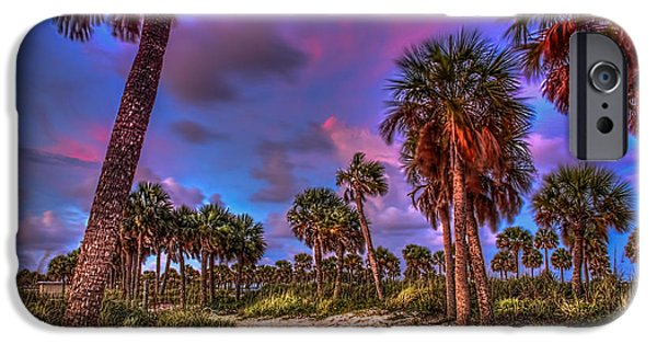 Beach Landscape iPhone Cases - Palm Grove iPhone Case by Marvin Spates