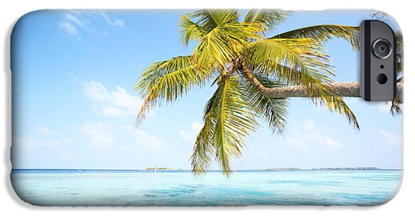 Landscape Poster Photographs iPhone Cases - Palm tree in the Maldives iPhone Case by Matteo Colombo
