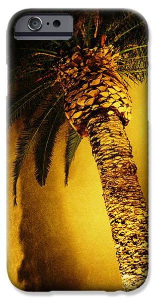 Palm Tree in Vegas. iPhone Case by Yo Pedro