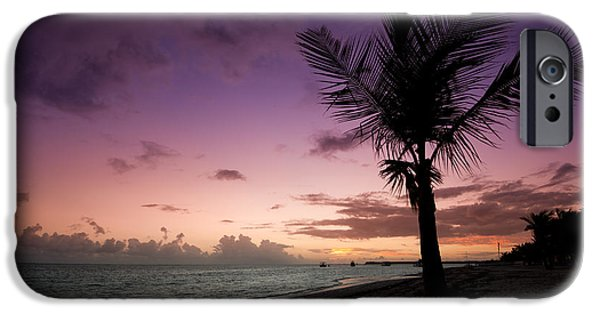 Palm Tree iPhone Cases - Palm Tree Sunrise iPhone Case by Sebastian Musial