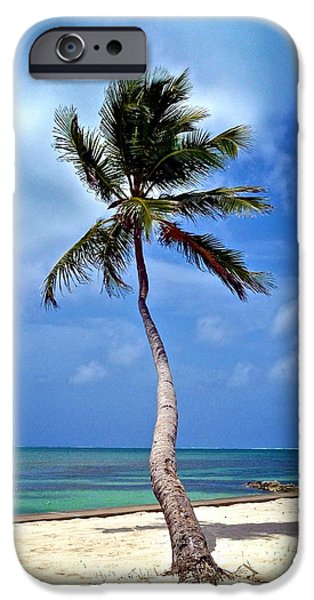 Hallmark Greeting Card iPhone Cases - Palm Tree Swayed iPhone Case by Kristina Deane