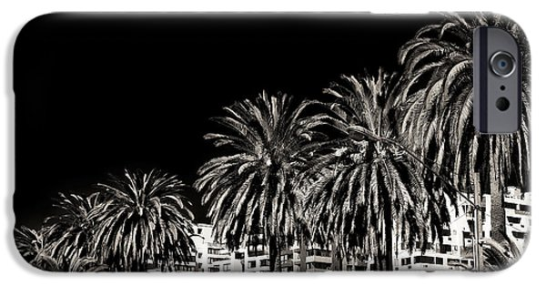 Vineyard Prints iPhone Cases - Palm Trees in Vina del Mar iPhone Case by John Rizzuto