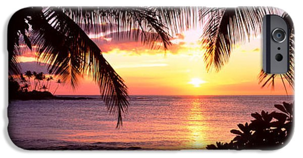 Big Island iPhone Cases - Palm Trees On The Coast, Kohala Coast iPhone Case by Panoramic Images