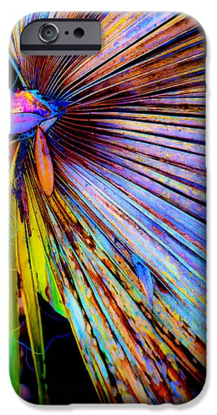 Palmettos iPhone Cases - Palmetto Gone Wild iPhone Case by Stephen Anderson