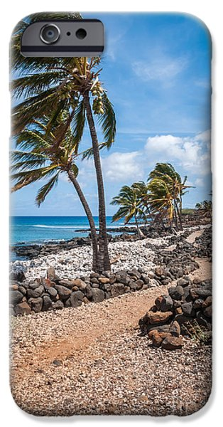 Palms At Lapakahi iPhone Case by Al Andersen