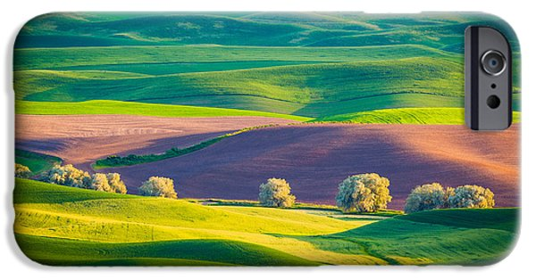 Agricultural iPhone Cases - Palouse Field 3 iPhone Case by Inge Johnsson