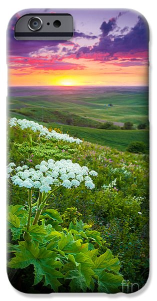 Harmonious iPhone Cases - Palouse Flowers iPhone Case by Inge Johnsson