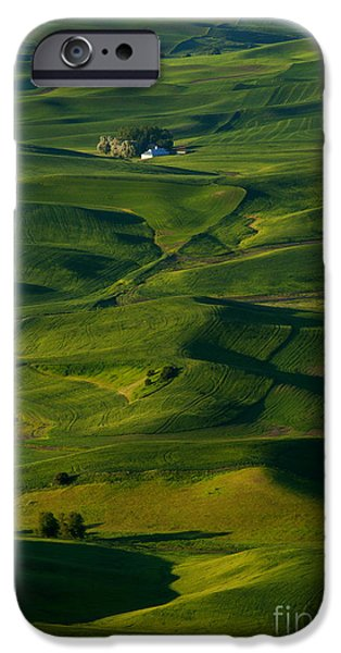 Crops iPhone Cases - Palouse Green iPhone Case by Mike  Dawson