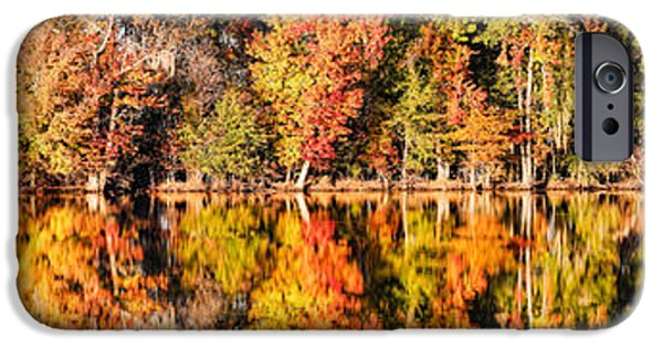 Stargazing iPhone Cases - Panorama of Fall Colors at Martin Dies Junior State Park - Jasper Piney Woods East Texas iPhone Case by Silvio Ligutti