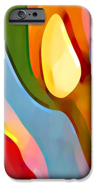 Abstract Movement iPhone Cases - Paradise Found 6 iPhone Case by Amy Vangsgard