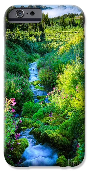 Creek iPhone Cases - Paradise Stream iPhone Case by Inge Johnsson