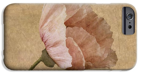 Close Up Floral iPhone Cases - Parchment iPhone Case by John Edwards