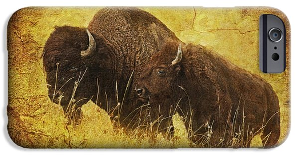 American Bison iPhone Cases - Parent and Child - American Bison iPhone Case by Lianne Schneider