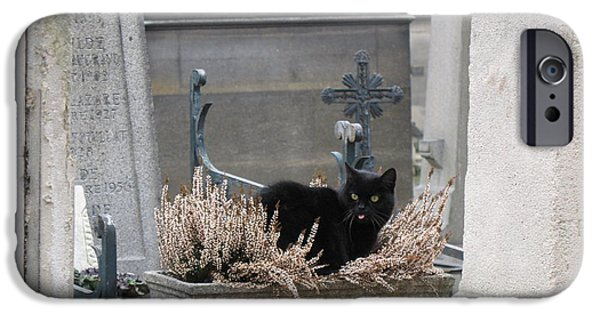 Wild Cats iPhone Cases - Paris Cemetery Cat - Le Chats Noir - Pere LaChaise - Black Cat On Grave Cemetery Art iPhone Case by Kathy Fornal