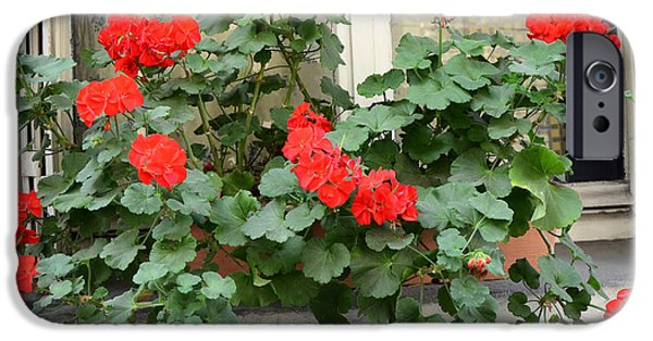 Red Geraniums iPhone Cases - Paris Window Flower Box Geraniums - Paris Red Geraniums Window Flower Box iPhone Case by Kathy Fornal