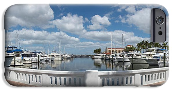 Manatee iPhone Cases - Park At The Riverside, Twin Dolphin iPhone Case by Panoramic Images