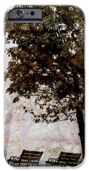 Contemplative iPhone Cases - Park Benches iPhone Case by Carol Leigh