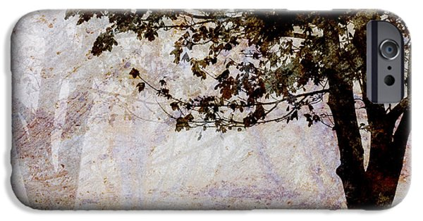 Contemplative iPhone Cases - Park Benches Square iPhone Case by Carol Leigh