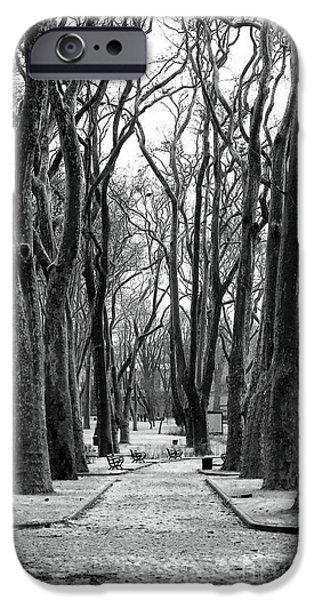 Monotone iPhone Cases - Park Path iPhone Case by John Rizzuto