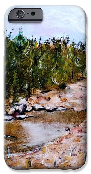 Creek Pastels iPhone Cases - Partridge Creek iPhone Case by Micki Davis