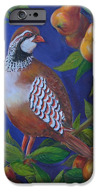 Pear Tree Paintings iPhone Cases - Partridge in a Pear Tree iPhone Case by Kristine Kainer