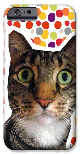 Nose iPhone Cases - Party Animal - Smaller Cat with Confetti iPhone Case by Linda Woods