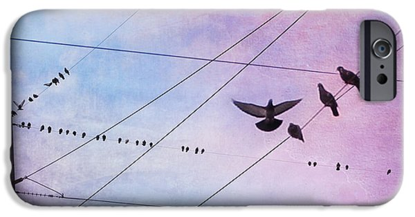 Photos Of Birds iPhone Cases - Party Line iPhone Case by Amy Tyler