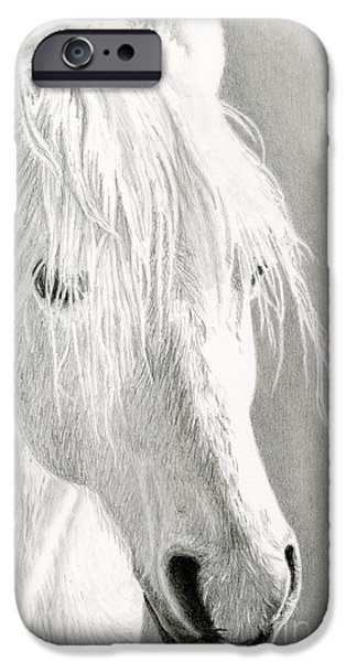 Agriculture Drawings iPhone Cases - White Horse- Paso Fino iPhone Case by Sarah Batalka