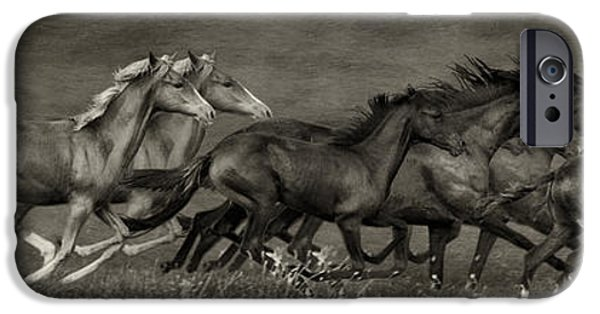 The Horse iPhone Cases - Paso Peruvian Horses on the Run iPhone Case by Priscilla Burgers