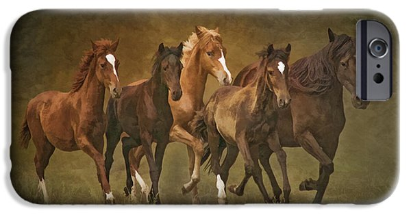 Horse iPhone Cases - Paso Peruvians iPhone Case by Priscilla Burgers