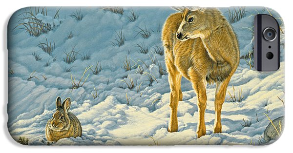 Fawn iPhone Cases - Passing Curiosity iPhone Case by Paul Krapf