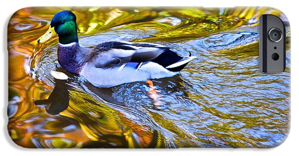 Willow Lake iPhone Cases - Passing Through iPhone Case by Frozen in Time Fine Art Photography
