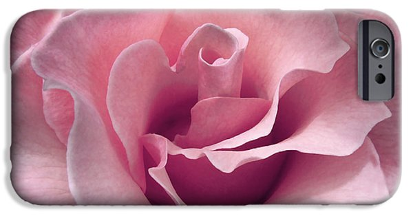 Dark Pink iPhone Cases - Passion Pink Rose Flower iPhone Case by Jennie Marie Schell