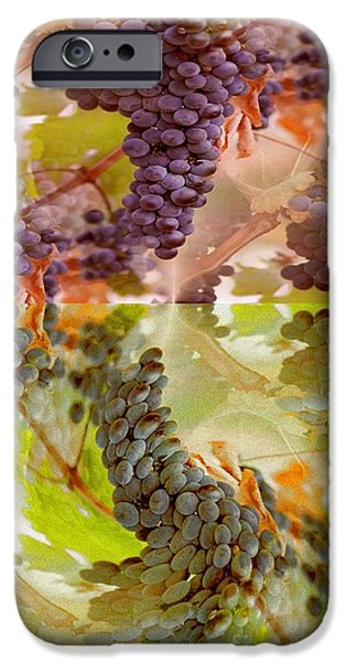 Plentyfull iPhone Cases - Passionate Squeeze iPhone Case by PainterArtist FIN