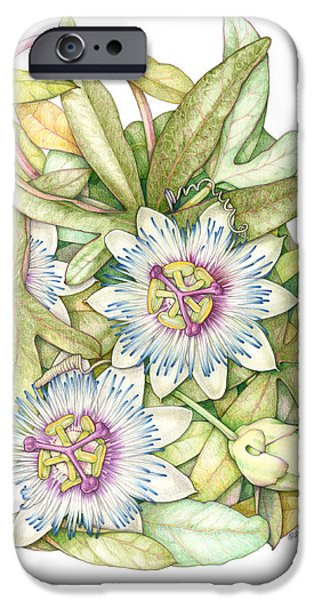 Passionflower iPhone Cases - Passionflower iPhone Case by Elizabeth Martin