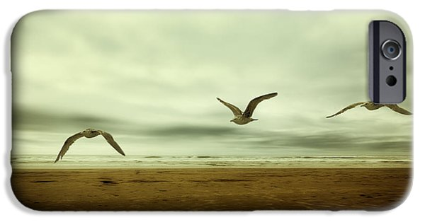 Flying Seagull iPhone Cases - Past Present Future of an Extended Moment iPhone Case by Belinda Greb