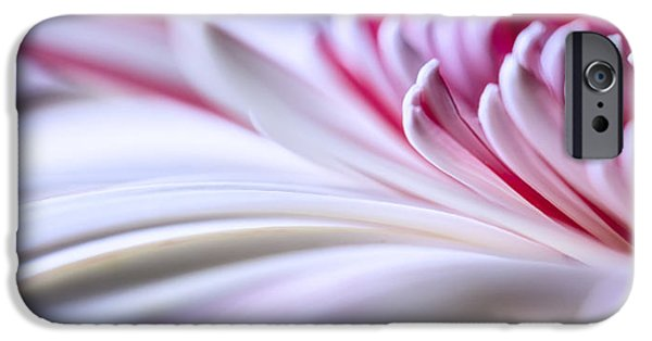 Close Up Floral iPhone Cases - Pastel Gerbera iPhone Case by Adam Romanowicz