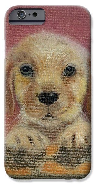 Puppies Pastels iPhone Cases - Pastel paintingpuppypeeping overwall iPhone Case by Yggdrasil Art
