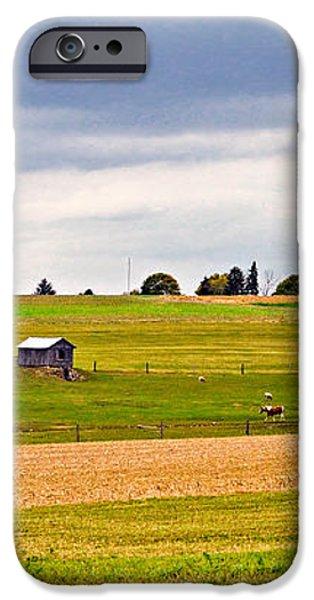 Pastoral Pennsylvania iPhone Case by Steve Harrington