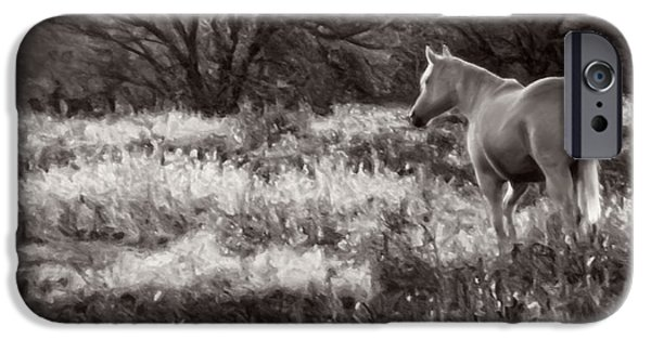 American Saddlebred Art iPhone Cases - Pasture iPhone Case by F Leblanc